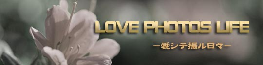LOVE PHOTOS LIFE -愛シテ撮ル日々-